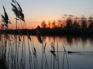 Self-catering holidays Norfolk Broads