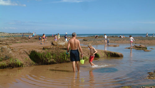 Cottage holidays near Sidmouth in Devon